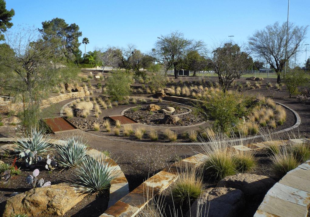 Backyard Landscaping Rocks