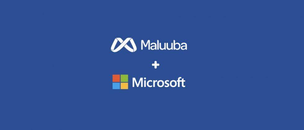 microsoft-acquires-maluuba