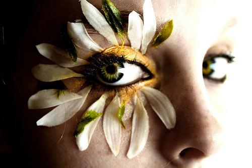 instantShift - Stunning Photographs to Refresh Your Mind