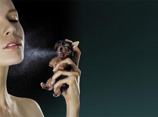 instantShift - Mind Blowing Photo Manipulations Art