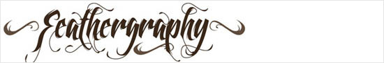 instantShift - Calligraphic Decorative Font - Featherography