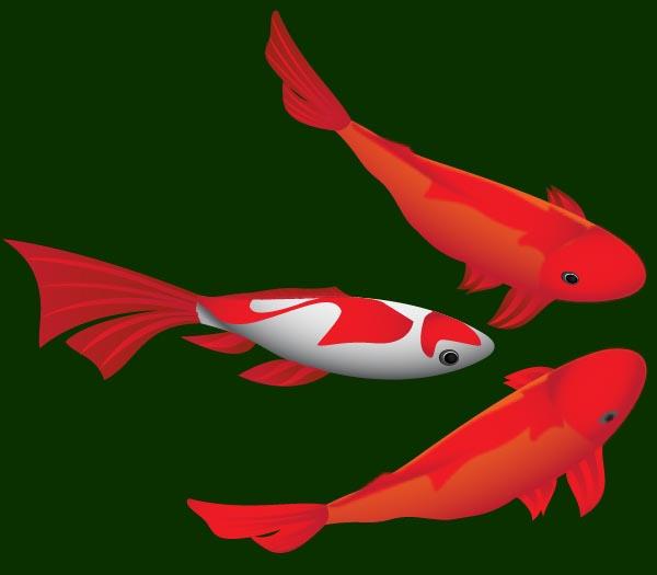 instantShift - Draw fishes