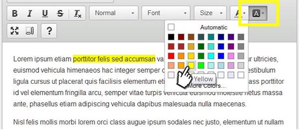 RAD Text Highlighter for WordPress
