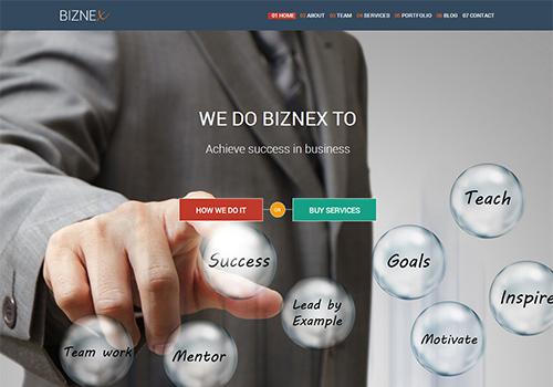 BizNex