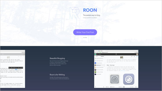 Roon Website Design in Blue Shades