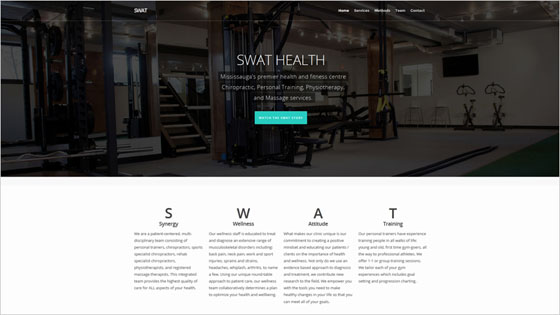 Swat Health Website with Blue-green Accent Shade