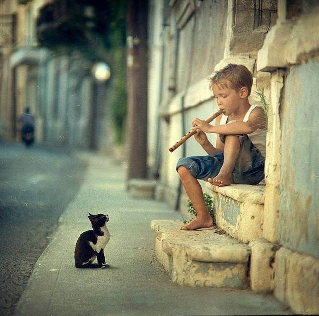 Powerful photos - Little boy playing the flute, with an attentive cat.
