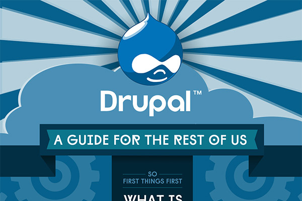 Is Drupal The Best Choice to Build a Website?