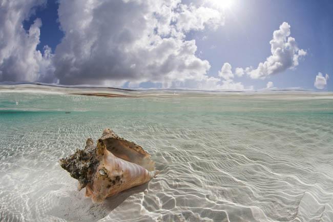 Deep Water Cay, Bahamas