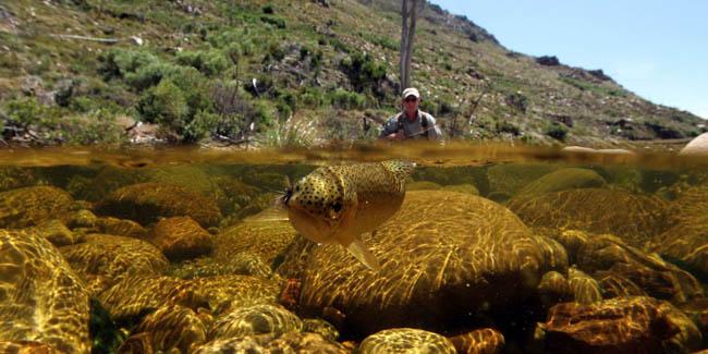 Berg River, Western Cape, South Africa