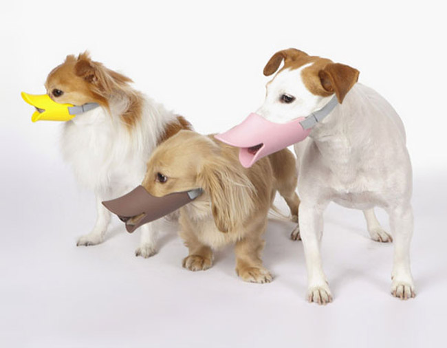 Quack: A Duck-Billed Protective Muzzle For Dogs