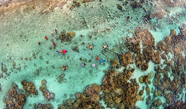 Snorkeling in the coral garden of Taha'a lagoon, French Polynesia.