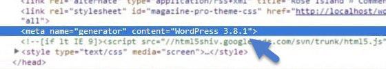 Hide WordPress Version Number