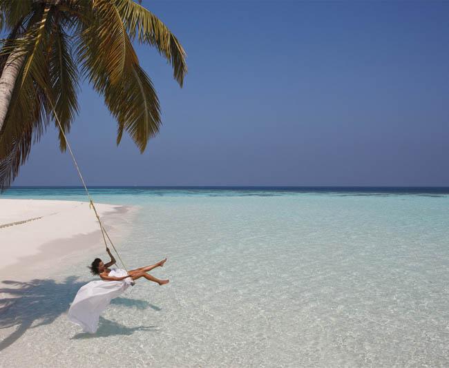 Palm tree sea swing.