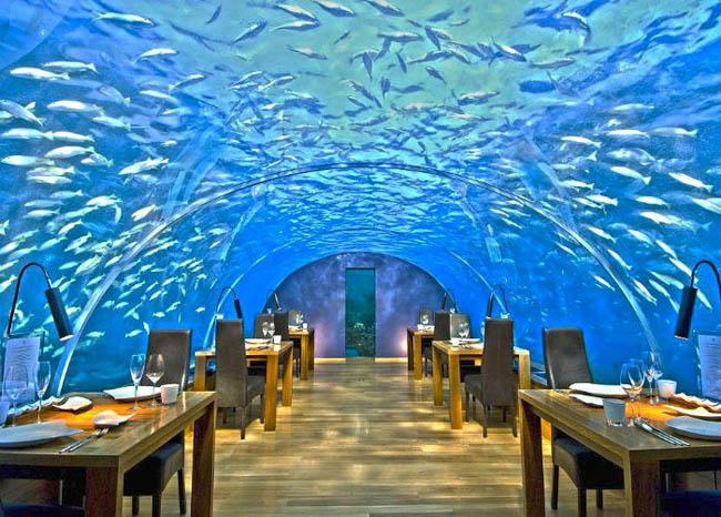 Ithaa Undersea Restaurant in Rangali Island, Maldives.