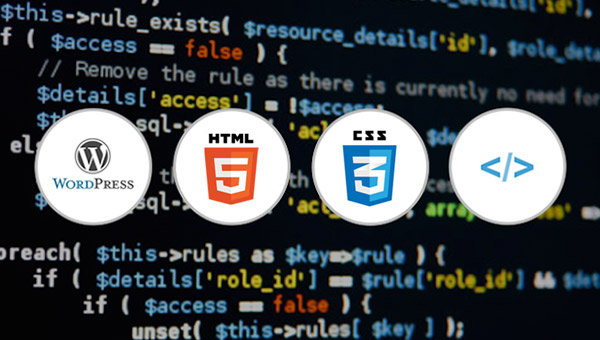 Learn SEO, WordPress, HTML, and CSS