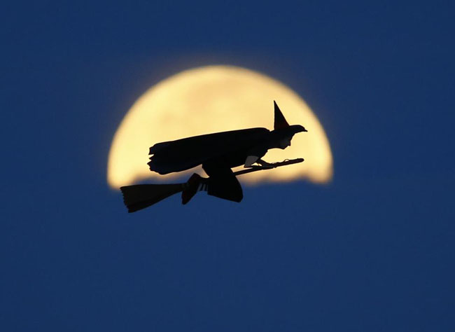 A radio-controlled flying witch makes a test flight past a moon setting into clouds along the pacific ocean in Carlsbad, California.