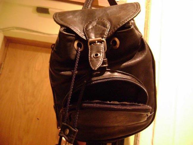 This Bag Looks Uncannily Like Phil Jones