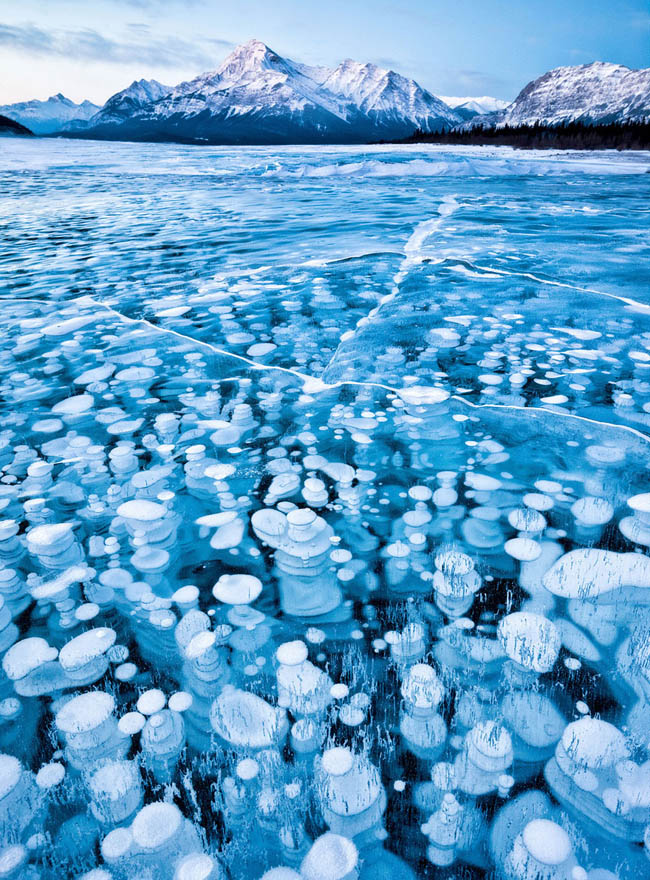 Frozen lakes - Bubbles Under The Ice Of Abraham Lake, Canada