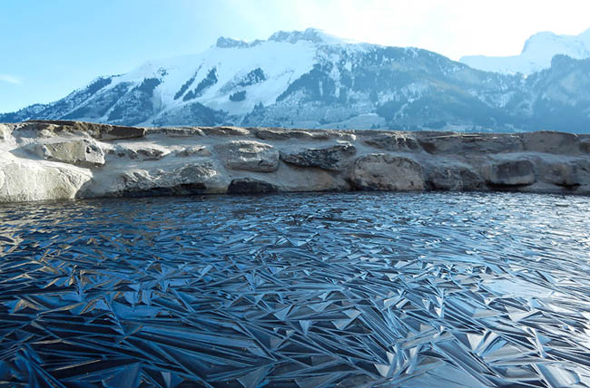 Pond In Switzerland