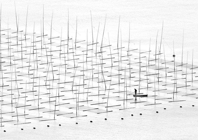 Farming The Sea, China