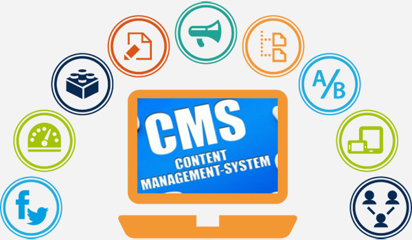Using Content Management System (CMS)