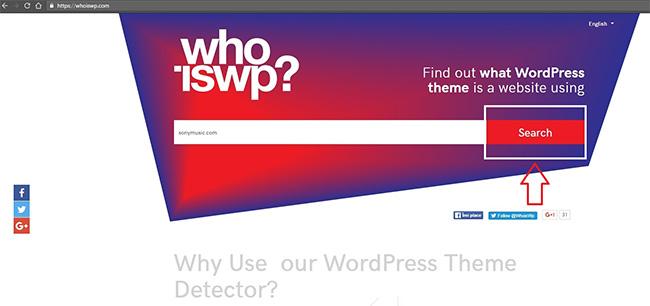 WordPress Theme Detector Installation