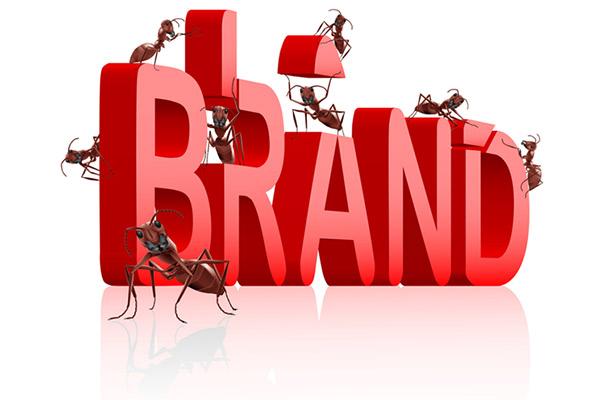Good Design Improves Branding Drastically