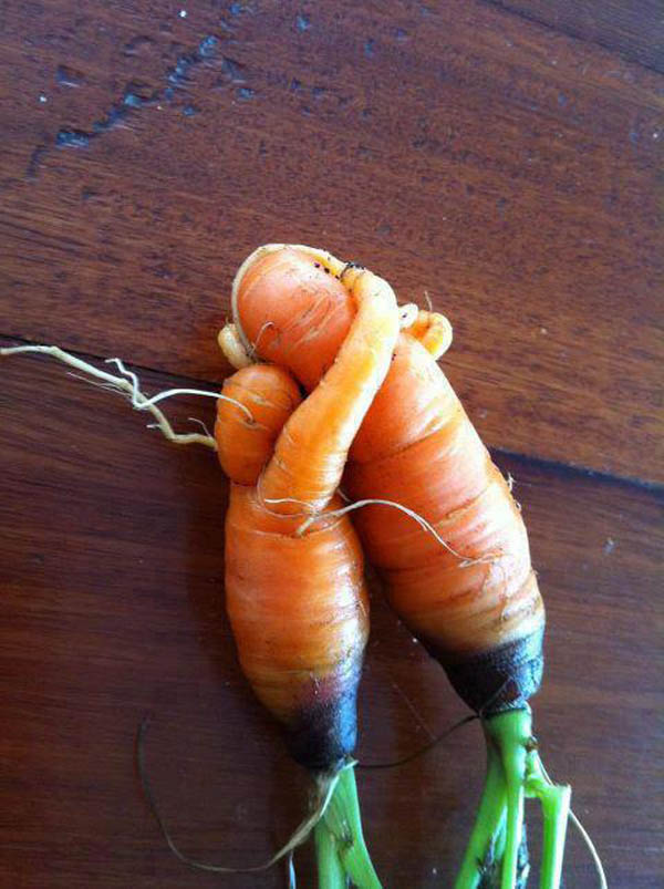 Mother And Child Vegetables