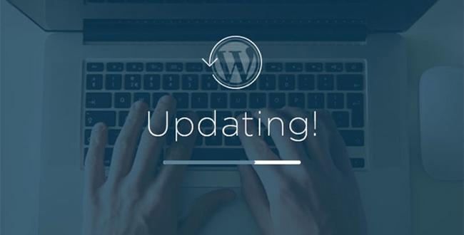 Failing to Update WordPress Regularly