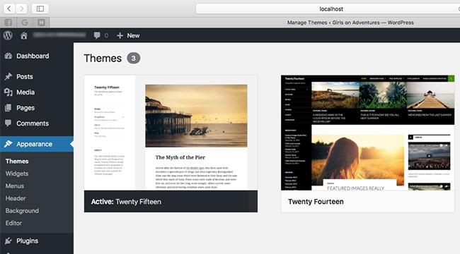 Adding a new theme on WordPress