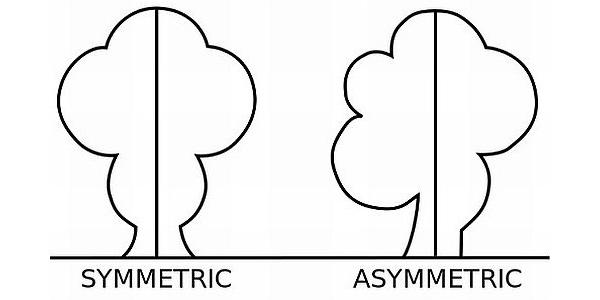 Symmetrical and Asymmetrical balance