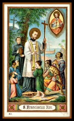 Image result for francis xavier
