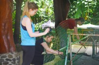 Painting enclosures