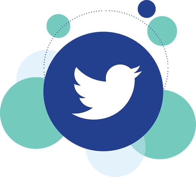El asunto de los bots en Twitter