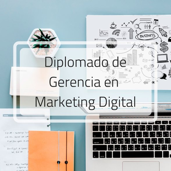 gerencia de marketing digital y redes sociales