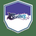 Skills Talents Zeeland Sharks