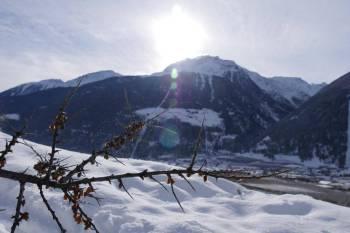 Winterwanderung in Laas 6