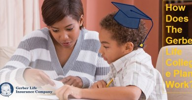 How Does The Gerber Life College Plan Work