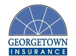 www.georgetowninsurance.com | Visit Georgetown Insurance Agency To Make Online Payments