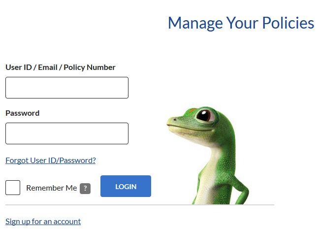 Geico Insurance Payment