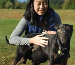 Banfield Pet Insurance Login 2018 – www.banfield.com
