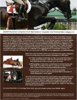 StarNet Professional Liability Flyer