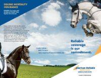 EMBR0319 – Equine Mortality Flyer