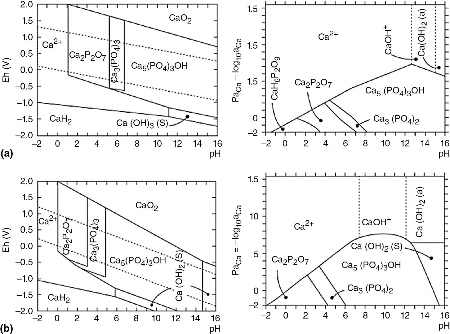 Synthetic Phase With The Structure Of Apatite
