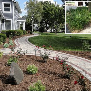 29-Landscapers-53212