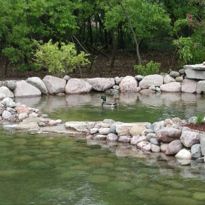 7-Landscaping-Brookfield