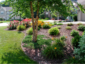 landscapers in, landscape contractors, Brookfield landscaping