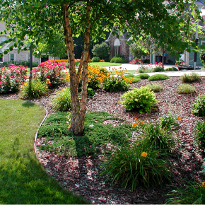 landscapers in, landscape contractors, Brookfield landscaping