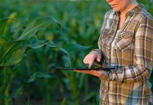 smart_farming